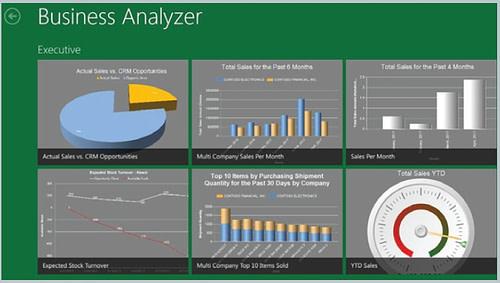 Business Analyzer Dashboard - Microsoft Dynamics GP 2013