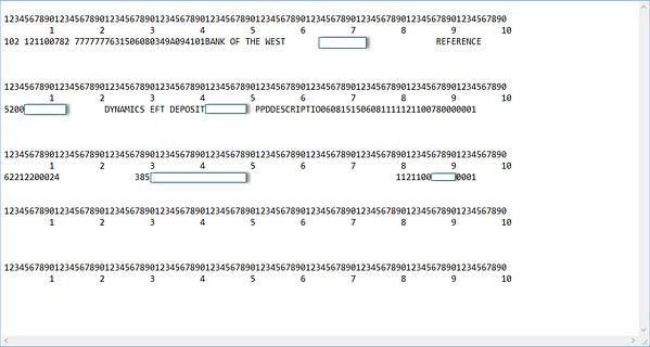 Dynamics GP EFT text file