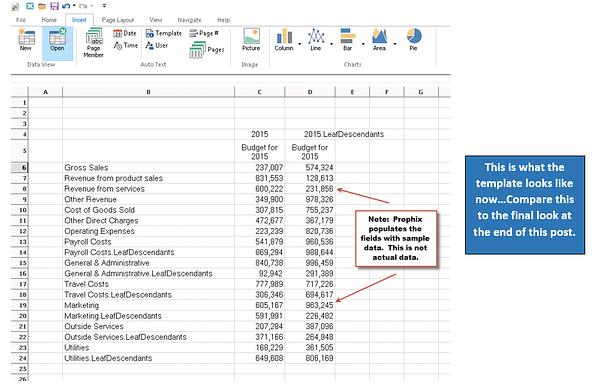 Prophix Spreadsheet