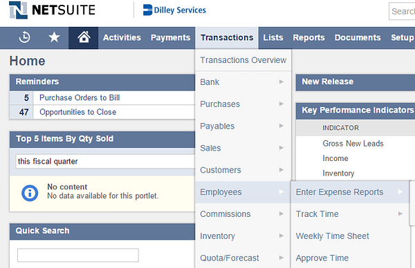 NetSuite Enter Expense Reports