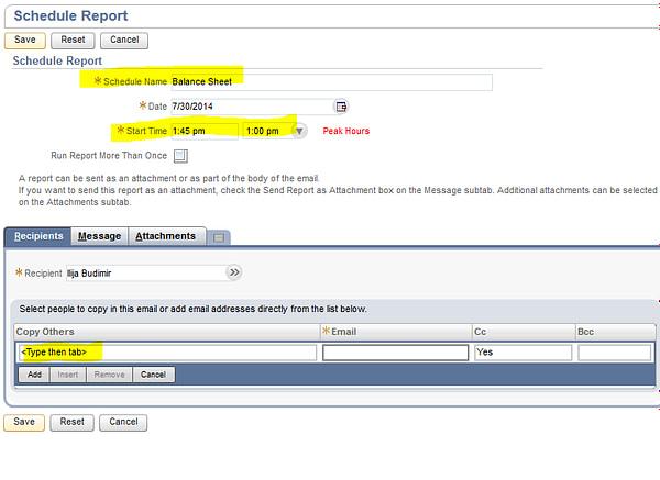 NetSuite Schedule Report